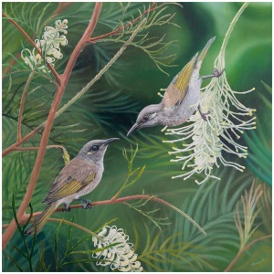 Love blossoms - oil painting of two brown honeyeaters on gravellia