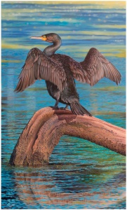 cormorant-the-great-main-image_1220506034