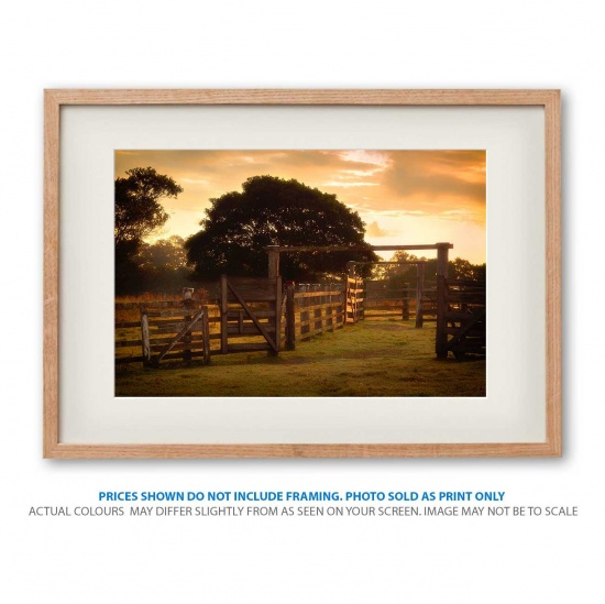 Golden Sunrise photo print in frame - display only