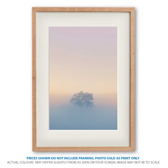 Last tree standing landscape photo print in frame - display only