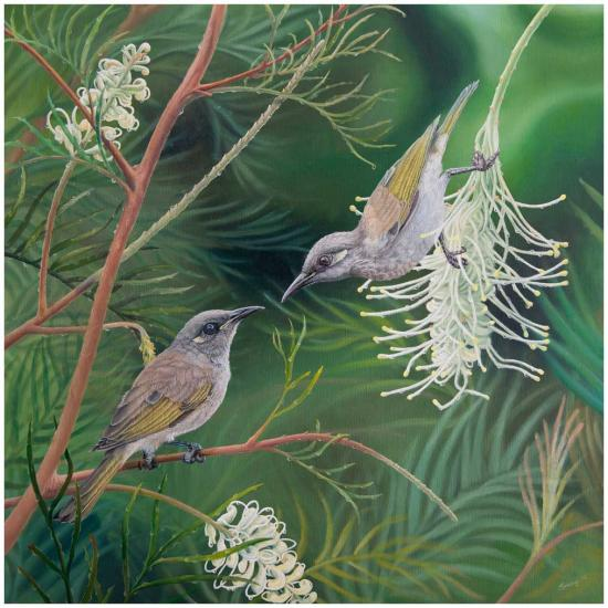 swapnil-nevgi-honeyeaters